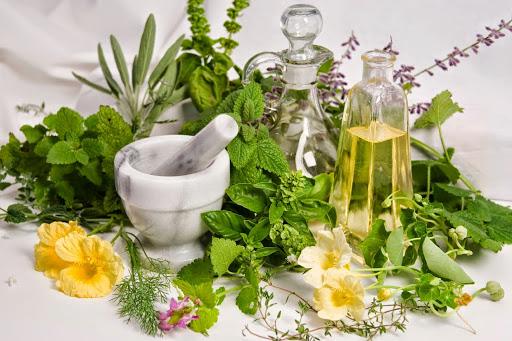 Mẹo chữa viêm amidan hốc mủ bằng 5 loại lá cây rẻ tiền, dễ kiếm