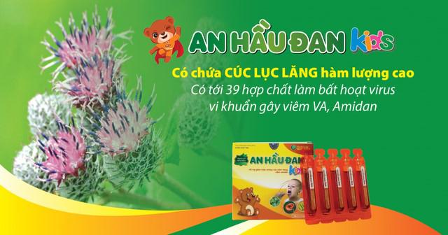 An Hầu Đan Kids